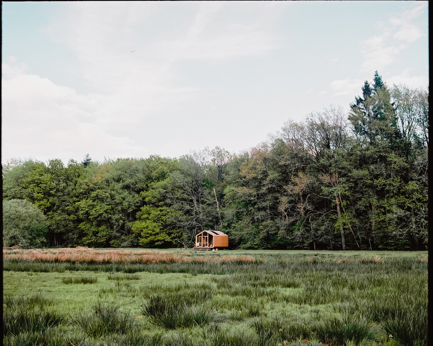 Cabiner: A cabin in the woods in the Netherlands