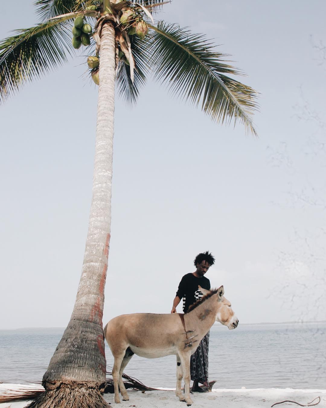 Lamu Sandy Bornman Kenya